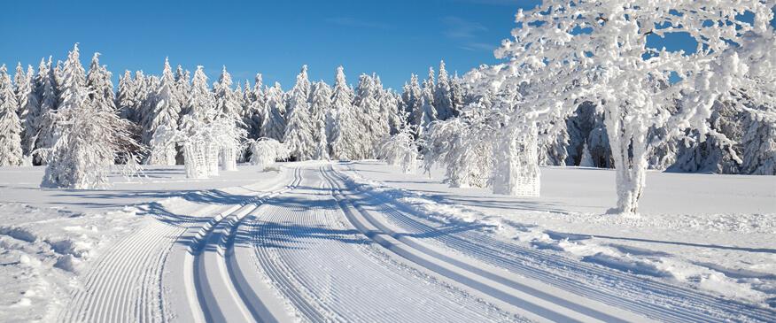 Ski fahren im Harz